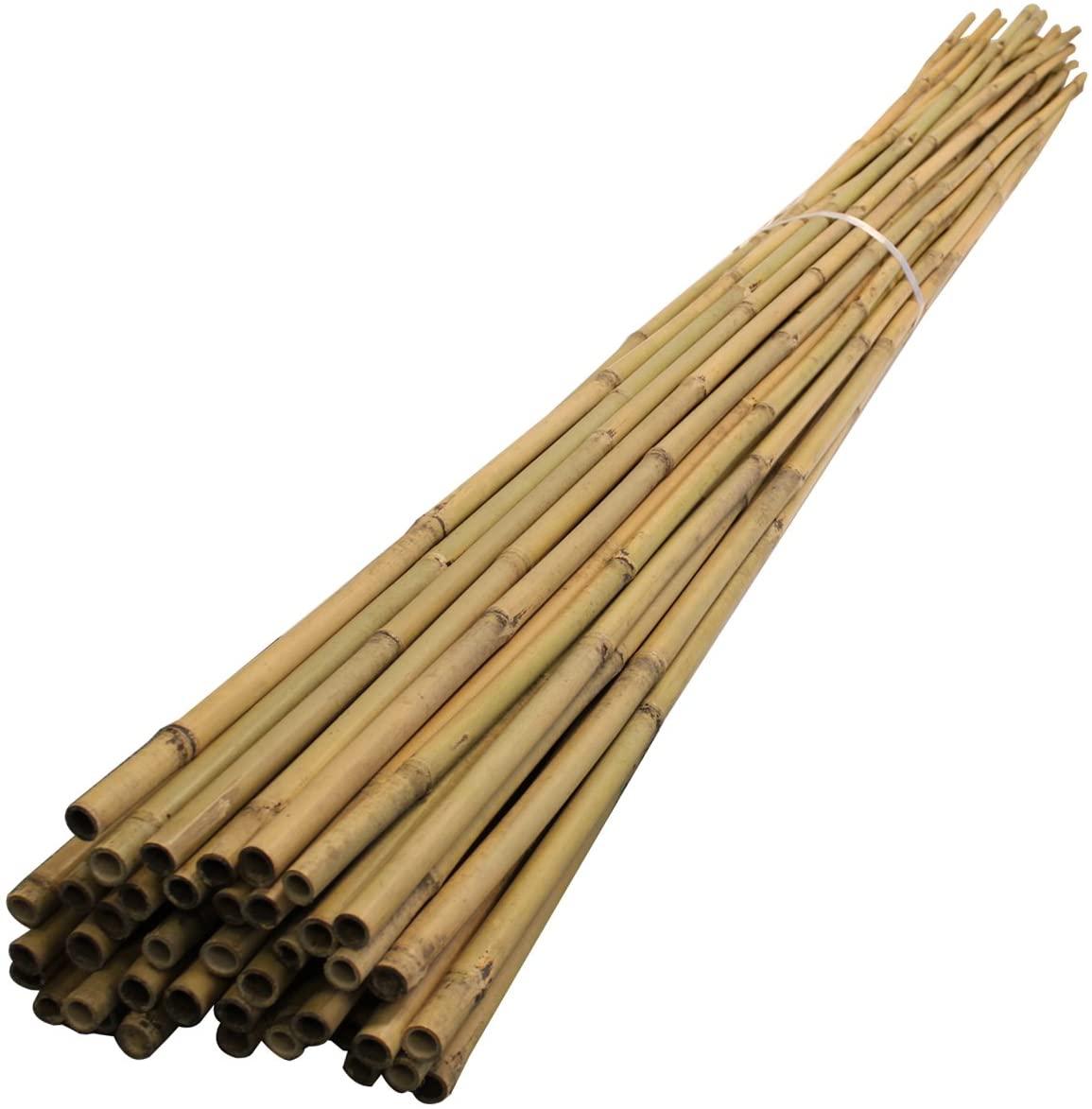 bamboo garden cane ten pack
